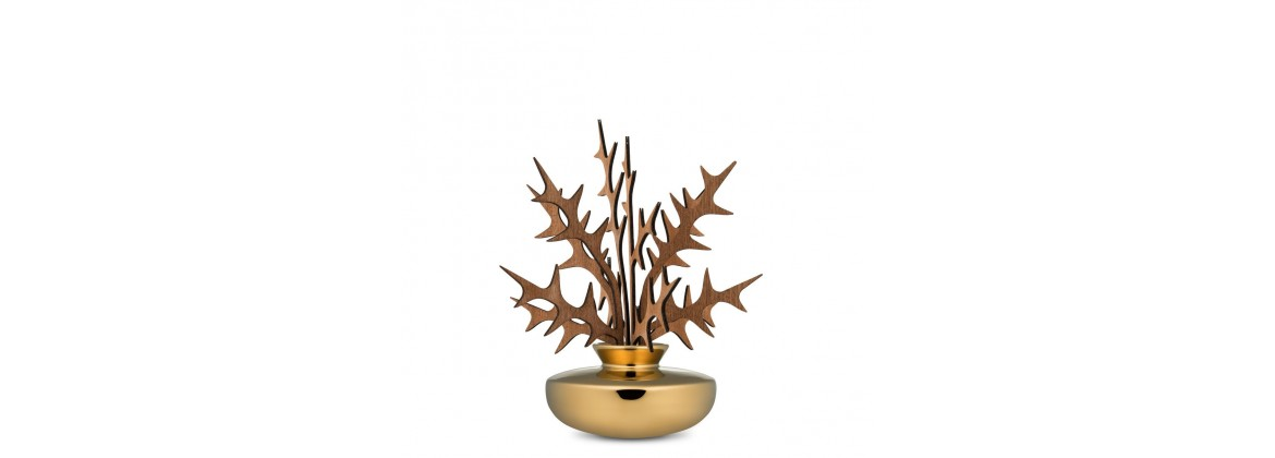The Five Seasons - Alessi | Modus1923.it