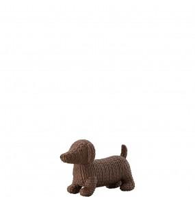 Pets - Dog Alfonso Macaroon